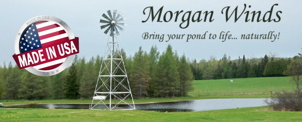 Morgan Winds